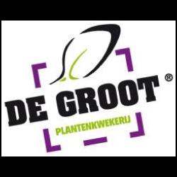 De-Grootl-250x250